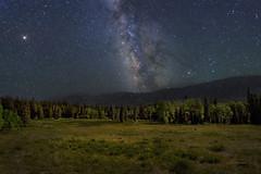 Alpine Nights (McKendrickPhotography.com) Tags: centralutah emerycounty milkyway stars night aspen pinemountainmeadow greatphotographers