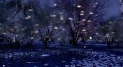 Fairy Lights (Rose Thornberry) Tags: luanes magical world fantasy landscape secondlife sl vr virtual reality scenery forest whimsical magic