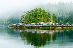 Island In The Mist (RussellK2013) Tags: fog mist island reflection nikon nikkor ngc nature nationalgeographic outdoor landscape water sea dramatic moody 70200mmf28vrii 70200mm 70200mmf28gedvrii d750