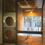 Toward the Eucalyptus Grove thumbnail