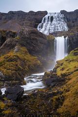 Dynjandi and Hæstahjallafoss, Westfjords, Iceland (Fabien Guittard) Tags: voyage paysage automne cascade nature fall landscape travel waterfall vestfirðir islande is