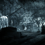 Forest Ayyanar Temple thumbnail