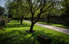 Quiet path (Phil-Gregory) Tags: nikon d7200 sigma18250macro sigma 18250 superzoom zoom green hardwickhall derbyshire light path countryside scenicsnotjustlandscapes landscapes