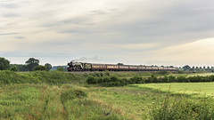 Scarborough Flyer (4486Merlin) Tags: 60103 england europe exlner flyingscotsman lnerclassa3 northyorkshire railways steam transport unitedkingdom boltonpercy gbr scarboroughflyer rytc wcrc