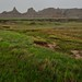 Mixed-Grass Prairie and Badlands Formations (Badlands National Park)