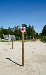 No Parking on the Beach (jeffyphotos) Tags: saublebeach sand sign noparking