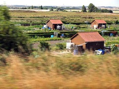 French Allotments (saxonfenken) Tags: 3007rhine 3007 sheds three calais france gardens allotments fromamovingvehicle tcf