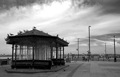 Oh I do like to be beside the seaside. (sidibousaid60) Tags: newbrighton wirral wallasey liverpool shelter seaside river mersey gulls promenade blackandwhite bw blancoynegro landscape