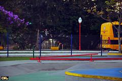 Colors in the park (Otacílio Rodrigues) Tags: parque ônibus schoolbus poste lamppost árvores trees pistadeskate skatelane urban resende brasil oro cerca clothfence supershot