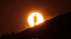In the sun (Nicola Pezzoli) Tags: italia bergamo leffe val gandino nature green natura italy sun monte farno sunshine warm light sunset zoom silhouette