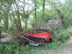 Abandoned Cars in the Woods. (Andrew 2.8i) Tags: car cars classic classics carspotting street spot spotting abandoned rusty scrap yard heap scrapyard scrapheap austin allegro bl british leyland
