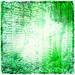 Theories of Light(ness)