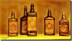 VINTAGE 1856 (jawadn_99) Tags: vintage classic old urban archetecture green brown supershot scout poster photography photographer interestingness flickr bottles win lequer alcohole explore glass