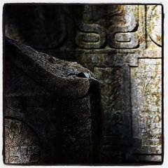 Stone garden 4. (oliverouge 2) Tags: graveyard cemetery oldjewishcemetery praha czechrepublic prague