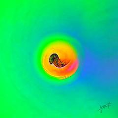 Simplicity in colors (aRtphotojart) Tags: colors simplicity art creative