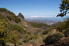 The North East of Gran Canaria (seahawkgfx) Tags: caldera de los marteles gran canaria north east landscape clouds trees