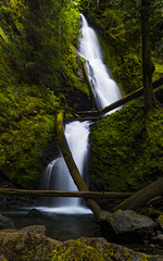 Murhut Falls (ValeTer_) Tags: waterfall water nature body green watercourse vegetation reserve stream feature nikon d7500 murhut falls olympic usa wa washington landscape washingtonstate murhutfalls