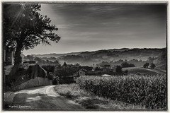 Le luci in capagna (becco6851) Tags: bw strada