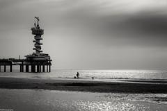 walk the dog (fhenkemeyer) Tags: sunset dogwalk bungeejumpingtower pier beach scheveningen denhaag