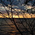 DSC_4294 thumbnail