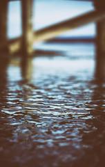 Das mit den Hindernissen zum Weiterschwimmen ist so eine Sache, die meisten sind eigentlich nur eine Ausrede, nicht ins Ungewisse tauchen zu müssen. (Manuela Salzinger) Tags: markelfingen abend evening sommer summer bodensee lakeconstance see lake sonnenuntergang sunset