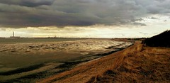 The Solent, looking west, late afternoon and low tide. (Chris@YellowMopArt) Tags: clifftop lowtide beach sea coast water southampton solent
