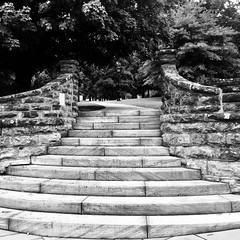 Step up (noitalsnarT_nI_tsoL) Tags: park garden weathered country rustic classic old stone trees climb walk path stairs steps blancoynegro bw blackandwhite
