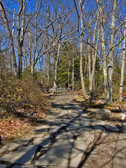 Pathway to Cooper's Rock (George Neat) Tags: preston monongalia county westvirginia west virginia state park morgantown cheat lake river valley coopers rock overlook scenic landscapes nature water wilderness georgeneat patriotportraits neatroadtrips