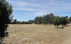 Lot 121 Franks Lane, Barooga NSW