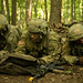 10th Regiment, Advanced Camp | Situational Training Exercises