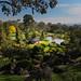 #8221 Cowra, Japanese garden