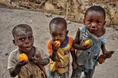 Mango boys