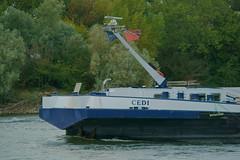 MS CEDI (Lutz Blohm) Tags: mscedi mannheim rheinschifffahrt rhein binnenschifffahrt binnenschiffe gütermotorschiff fluskilometer418 sonyalpha7aiii rheinzutal sonyfe70300goss