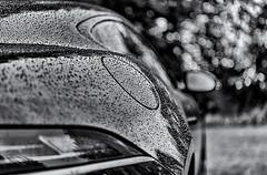 Left out in the rain (David Feuerhelm) Tags: closeup bw blackandwhite monochrome noiretblanc schwarzundweiss contrast bokeh dof rain water droplets drops outside jaguar nikon d750 2470mmf28