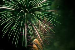 180810_LINZ_053 (Rainer Spath) Tags: österreich austria autriche oberösterreich upperaustria linz donauinflammen feuerwerk fireworks