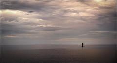 Señal marítima y horizonte2/ Port light and horizon (Jose Antonio. 62) Tags: spain españa asturias gijón sea mar horizonte horizon clouds nubes