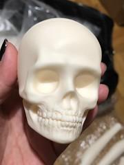 Boxopening Spiritdoll Physalia 16th August 2018 (Sadomina) Tags: doll bjd abjd balljointeddoll spiritdoll sadomina creepy skull dead undead decay creepydoll horror horrordoll macabre morbide darkart art surreal