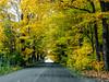 Couleurs d`Automne - 2017 (Nicober!!!) Tags: quebec canada couleurs automne autumn colors feuilles leafs arbre tree ile dorleans stefamille