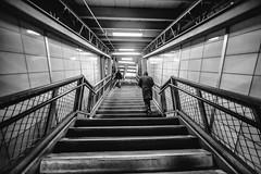 You Say That I Treat You Like a Book on a Shelf (Thomas Hawk) Tags: manhattan nyc newyork newyorkcity usa unitedstates unitedstatesofamerica architecture bw stairs fav10 fav25 fav50 fav100