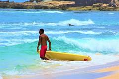 Surfer (thomasgorman1) Tags: surfer nikon man surfboard beach sand sea shore oahu hawaii island surfing