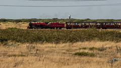 9 (JOHN BRACE) Tags: romney hythe dymchurch loco number 9 built 1931 by yorkshire engine co named winston churchill seen approaching dungeness station