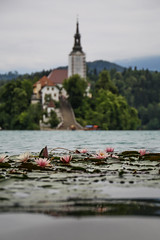 Bled (Benellissimo) Tags: bled radovljica slovenia si