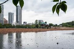 Shinobazu Pond (atsubor) Tags: tokyo japan park garden pond skyscraper temple 東京 日本