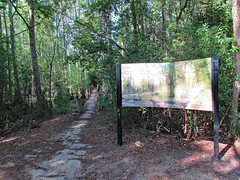 Beginning Of Jacob Swamp Trail. (dccradio) Tags: lumberton nc northcarolina robesoncounty outdoor outside outdoors nature natural woods forest wooded swamp jacobswamp summer summertime summerfoliage lutherbrittpark park citypark june sunday afternoon pineneedles pinestraw shadow tree trees sign words text sky trail swampland greenery treebranch branch branches treebranches sunshine sunlight treelimb treelimbs naturetrail walkingtrail path canon powershot sx510hs bridgecamera