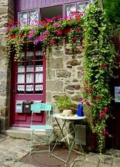 arabesque de fleurs (mchub) Tags: dinan cotedarmor bretagne hx400v fleurs pierres porte boiteauxlettres