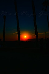 07 (morgan@morgangenser.com) Tags: sunset red orangeyellow blue pretty cloud silhouette sun evening dusk palmtrees bikepath sand beach santamonica pacificpalisades beautiful black dark cement amazing gorgeous inawe ca photobymorgangenser