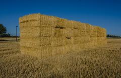 Bale architecture (frankmh) Tags: bale wheatbale field hittarp helsingborg skåne sweden landscape