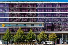 *** (donnicky) Tags: tallin architecture building city frontview outdoor publicsec street summer windows tallinn harjumaakond estonia ee d850 purple