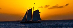 Sailing On Summer Breeze (Professor Bop) Tags: drjazz professorbop olympusem1 keywestflorida