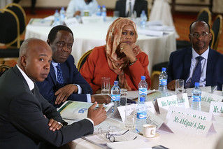 Electoral Systems and Electoral Boundaries Delimitation for Somalia